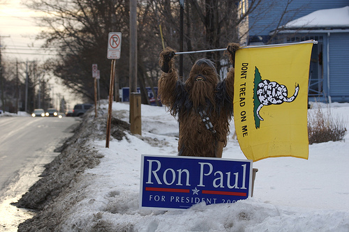 http://www.prosebeforehos.com/pope-ron-paul/10/28/my-hairiest-supporter-yet/
